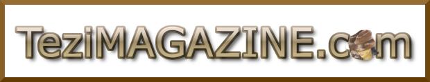 teziMAGAZINE, gold border, white 1068x206