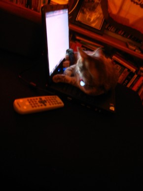 Little Mishka, Editor In Chief of TE-Zine!